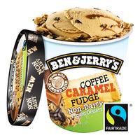 Ben & Jerry's Non-Dairy Ice Cream - Coffee Caramel Fudge