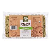 Origins Organic Steam Noodle - Spinach