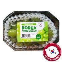 Premium Shine Muscat Korea Grape