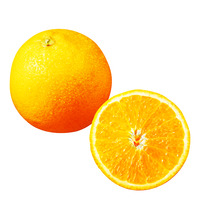 Valencia High Birx Oranges