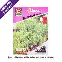 Horti Long Life Seeds - Tarragon Russian