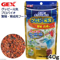 Gex Guppy Probiotic Food