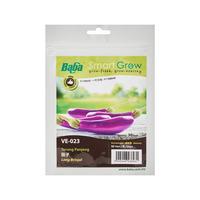 Baba Hybrid Long Brinjal Seeds