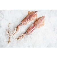 Catch Seafood Whole Squid Large (Wild Caught)