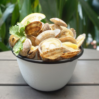 Catch Seafood White Clams