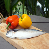 Catch Seafood Saba Mackeral Fillet Raw