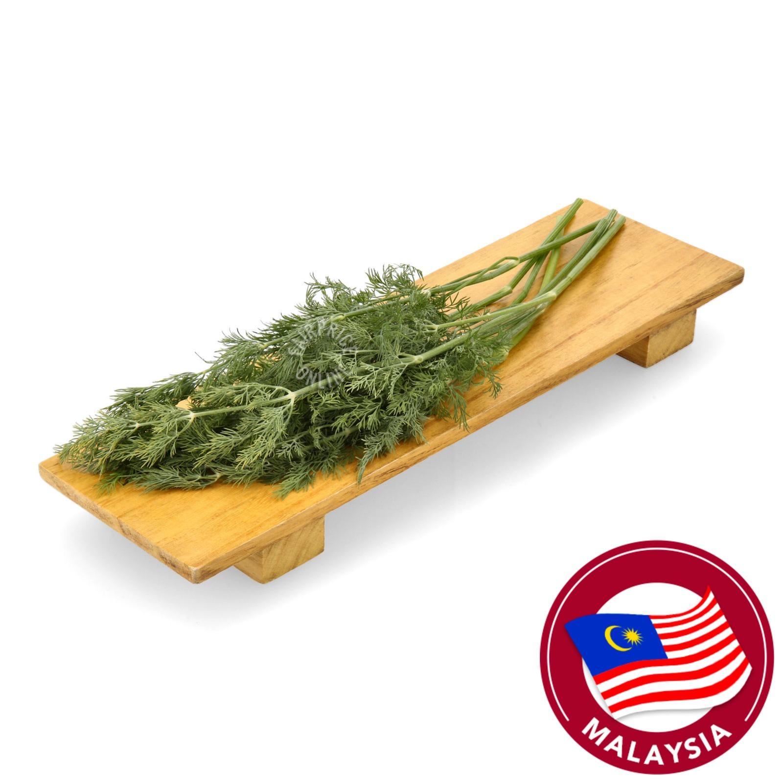 Live Well Fresh Herbs - Dill
