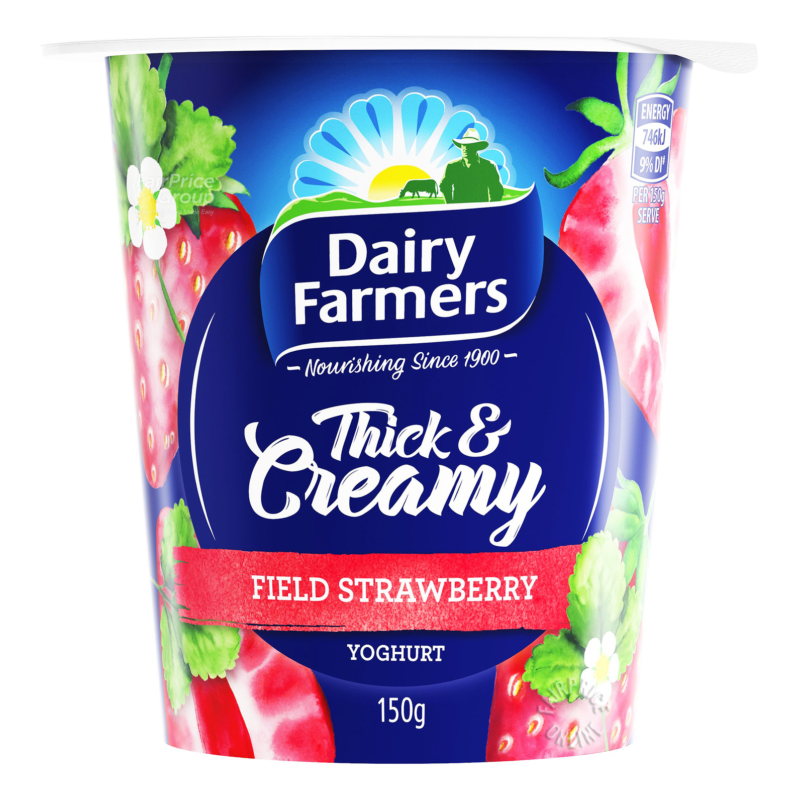 Dairy Farmers Thick & Creamy Yoghurt - Field Strawberries