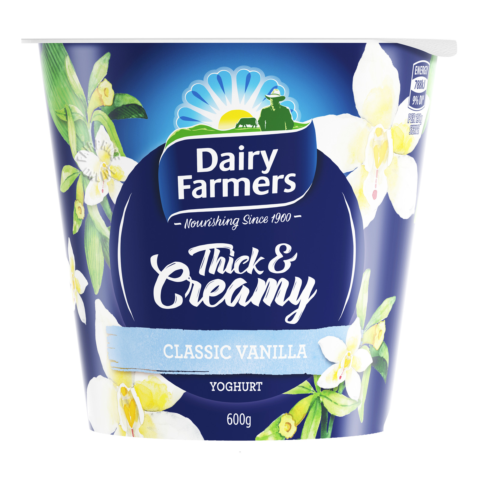 Dairy Farmers Thick & Creamy Yoghurt - Classic Vanilla