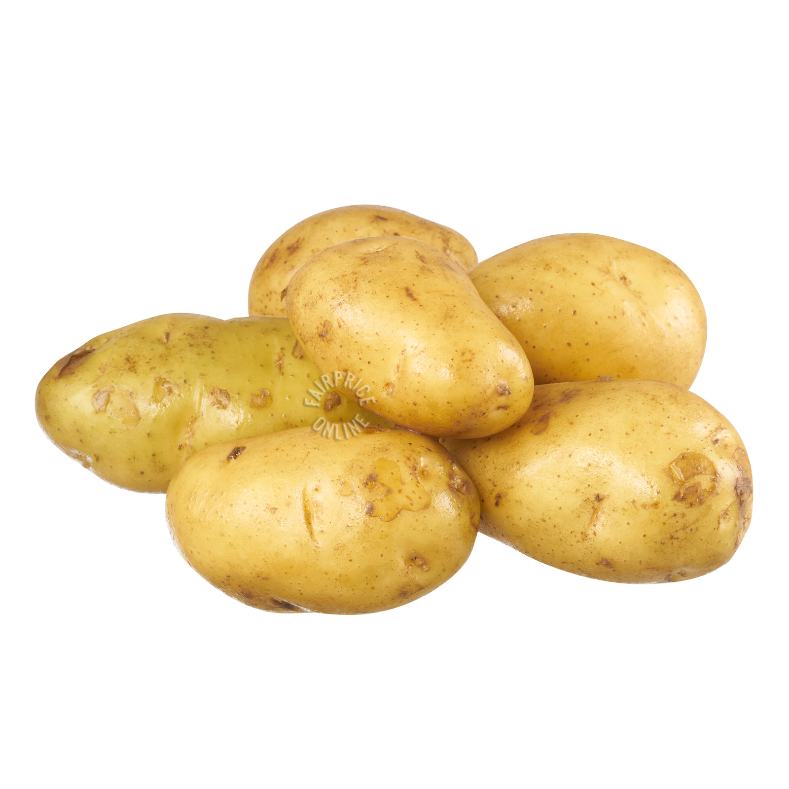 Holland Potato (China)
