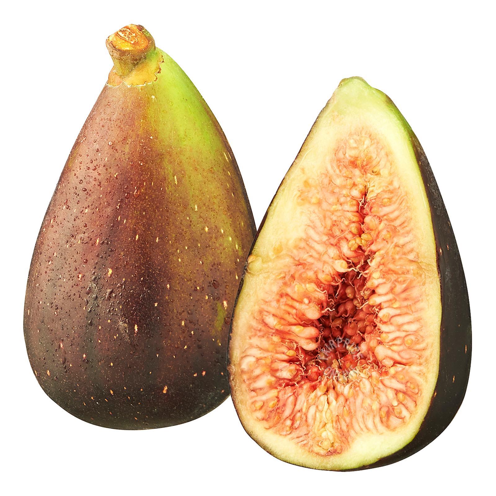 Star South South Africa Figs