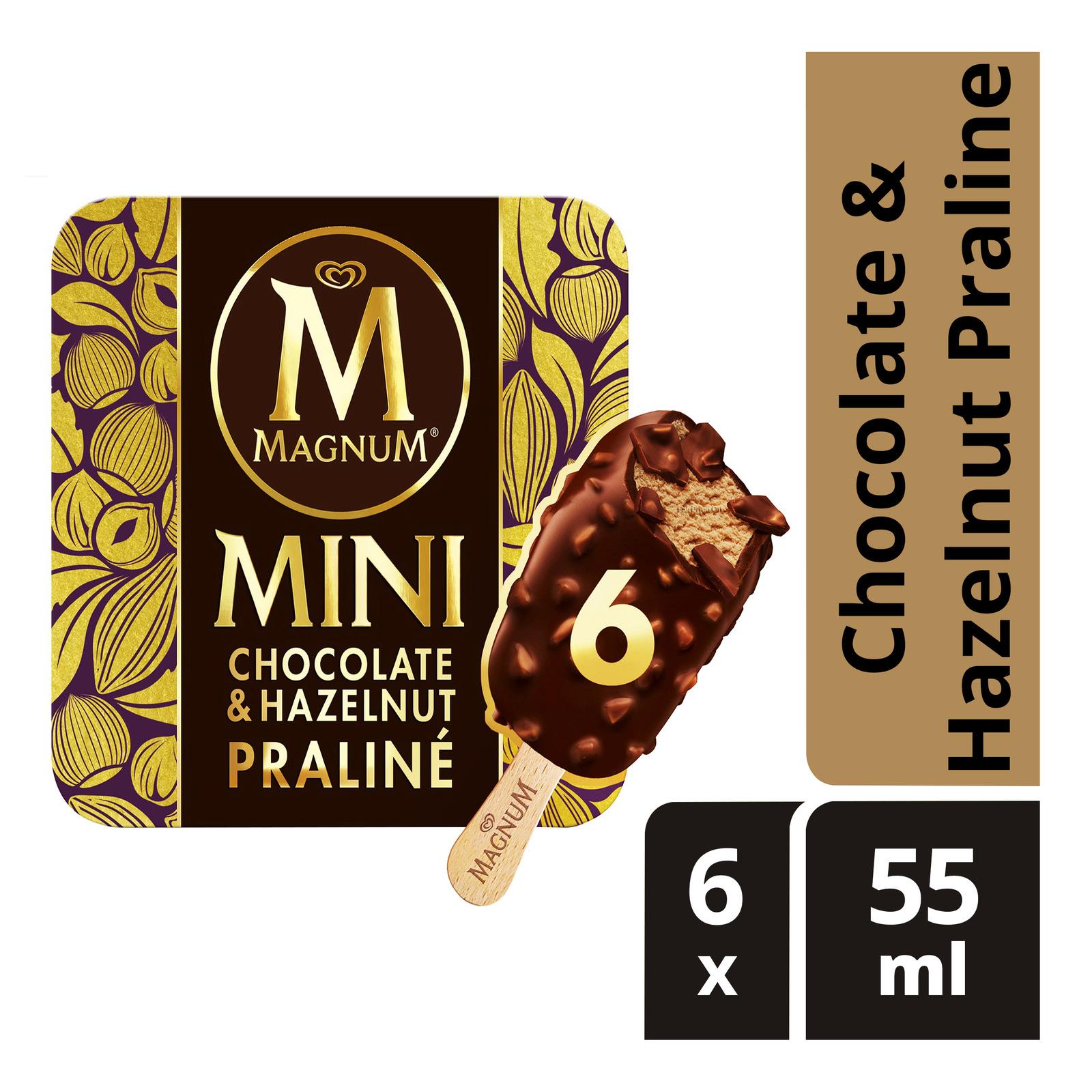 Magnum Mini Ice Cream - Chocolate & Hazelnut Praline