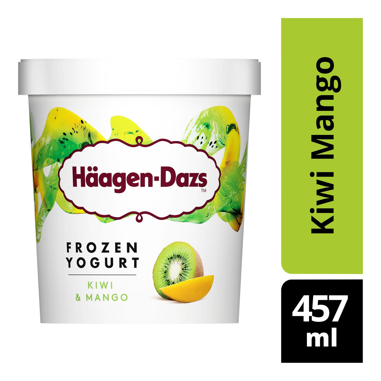 Haagen-Dazs Frozen Yogurt - Kiwi Mango