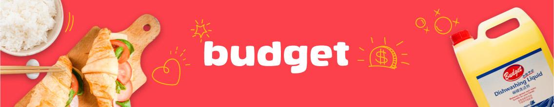 Budget_CatBanner