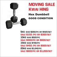 MOVING SALE-Hex Dumbbell