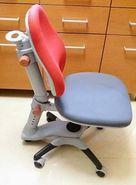 SELL SPI Healthy Spine Chair - SPI 「人體工程學」兒童成長護脊健康椅
