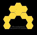 Bee Patterns (Pvt) Ltd