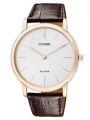 Citizen Eco-Drive AR1113-12A