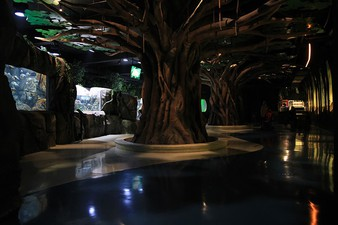 photo of XWORK - Theater Area Jakarta Aquarium Indonesia, Jakarta Aquarium Indonesia 1 6