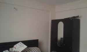 2 BHK Flat for Rent in Pulse Apartment, Bannerghatta Road | Picture - 11