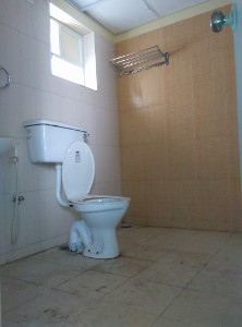 3 BHK Flat for Rent in Damden Zephyr, Gottigere | Picture - 18