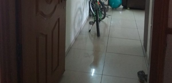 3 BHK Flat for Rent in Rennaissance Temple Bells, Yeshwanthpur - Photo 0
