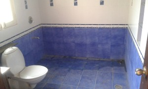 4 BHK Flat for Rent in Pearl Residency Apartment And Row Houses, Marthahalli   Picture - 17