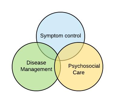 palliative-venn-diagram