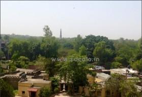 Apartment - Looking for a male flatmate in Saket in The Garden of Five Senses, Saiyad ul Ajaib, Sainik Farm, New Delhi, Delhi, India