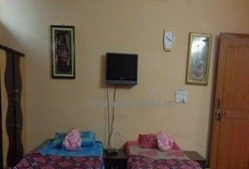 Apartment - 1RK on Rent in Sector 51 in Sector 51, Noida, Uttar Pradesh, India