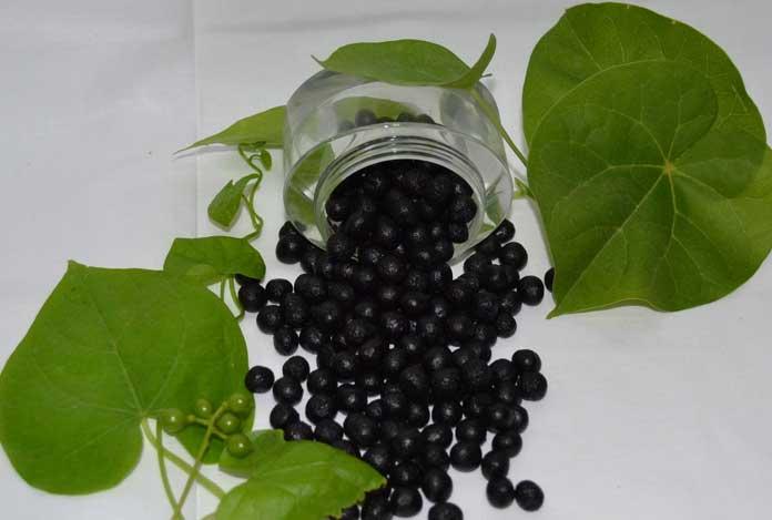 Rasayana for Royal Secret Ayurvedic Antiaging Remedies for Youthful Skin