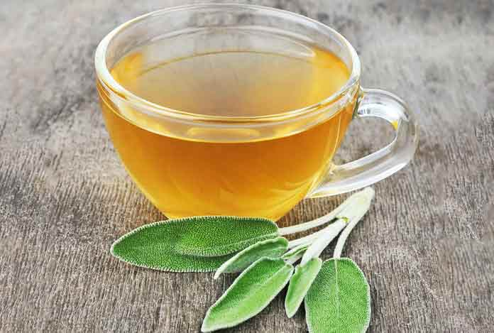 Sage for 10 Best Herbs That Help in Weight Loss