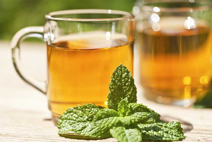 Peppermint for 10 Best Herbs That Help in Weight Loss