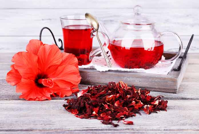 Hibiscus for 10 Best Herbs That Help in Weight Loss