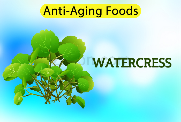 watercress to delay aging