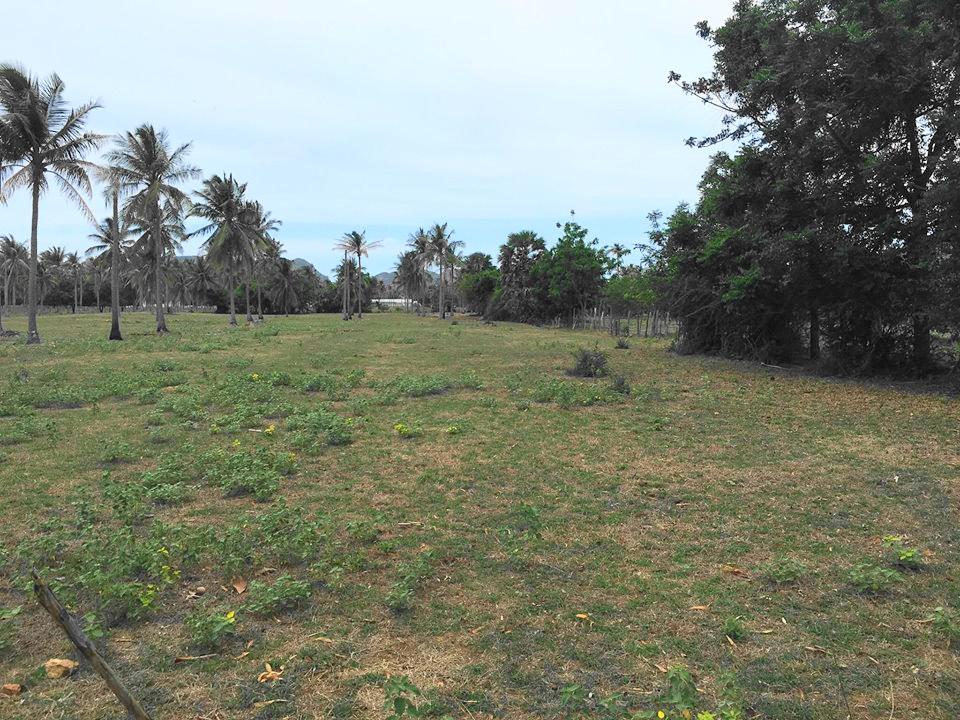 Land For Sale near Beach at Dolphin Bay, Sam Roi Yod